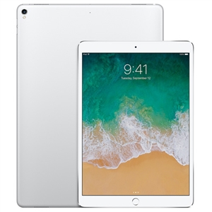 Wholesale Apple iPad Pro 256GB Wi-Fi Gold 12.9-inch Display Tablet
